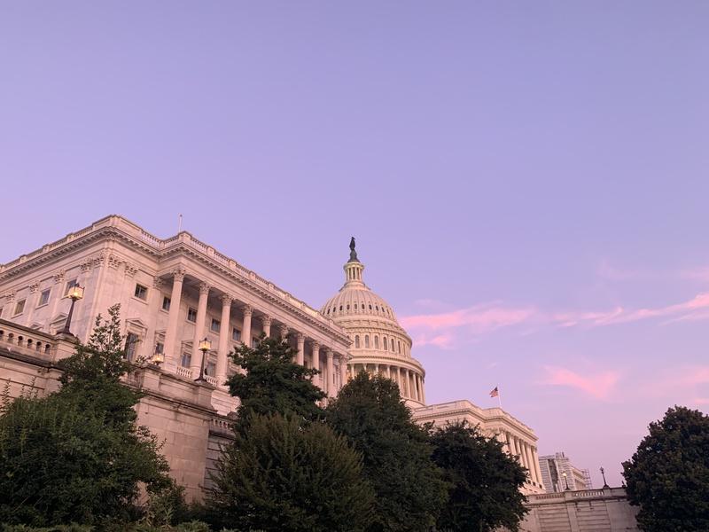 Summer Postcard: Washington D.C.