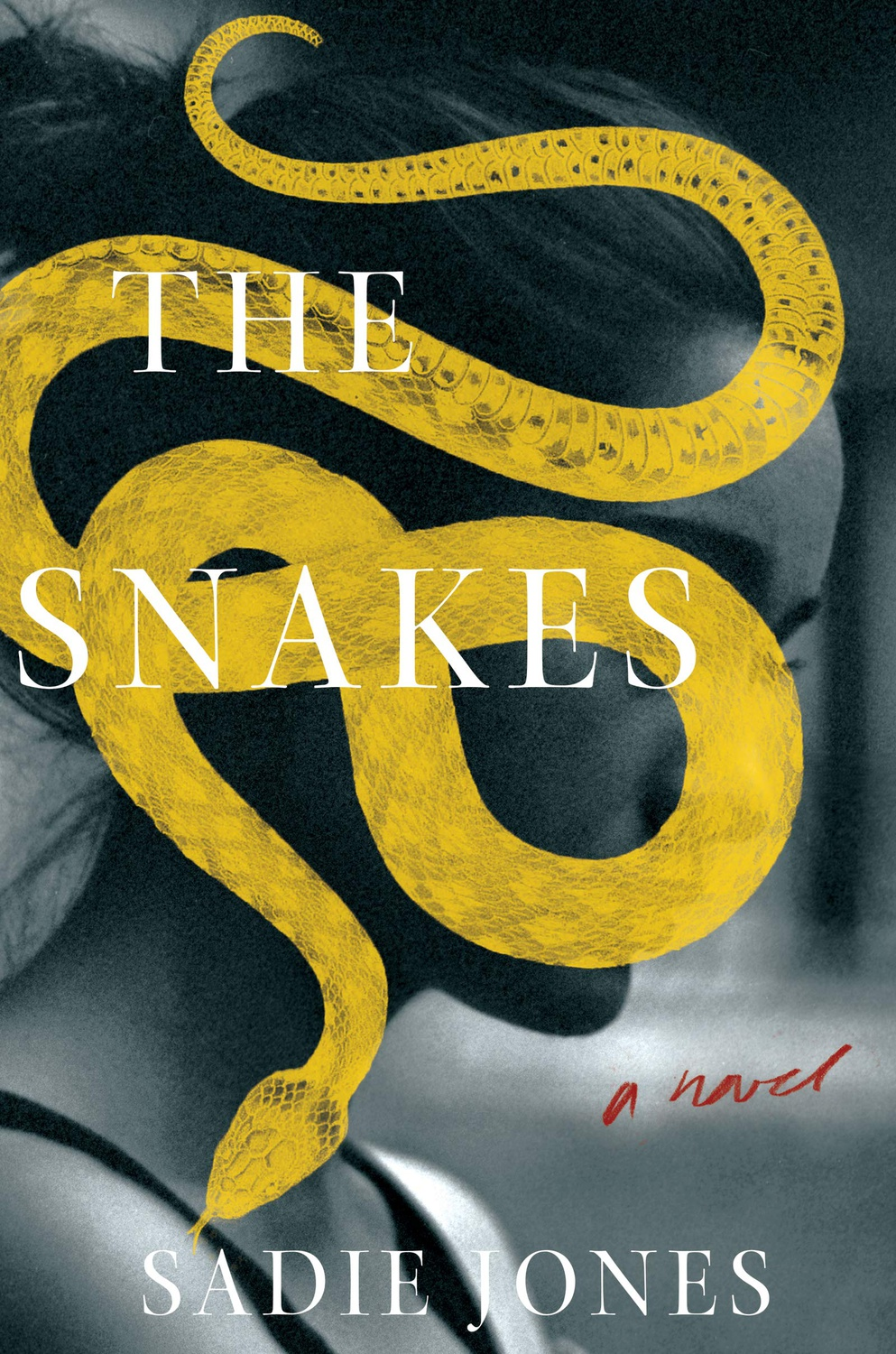 The Snakes Cover