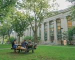 Law School in The Summer