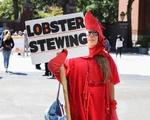 Climate Change Lobster