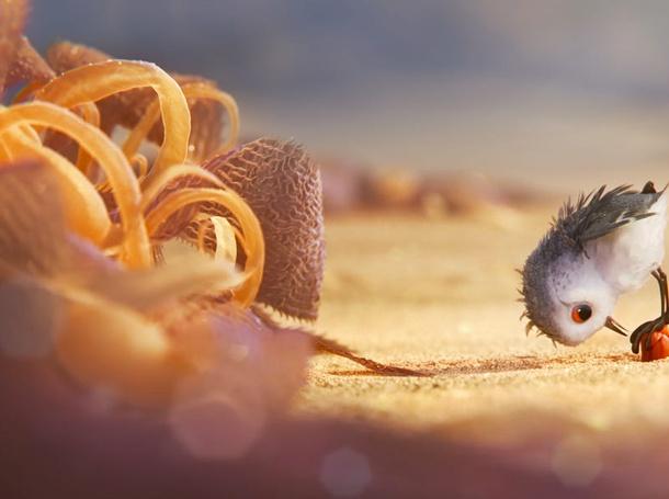 Disney Pixar Piper Still