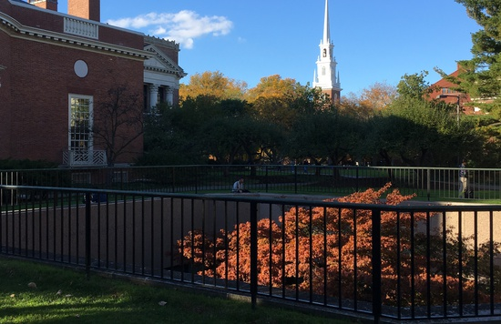 Fall and Memorial Church