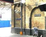 Platform 9 3/4 Still