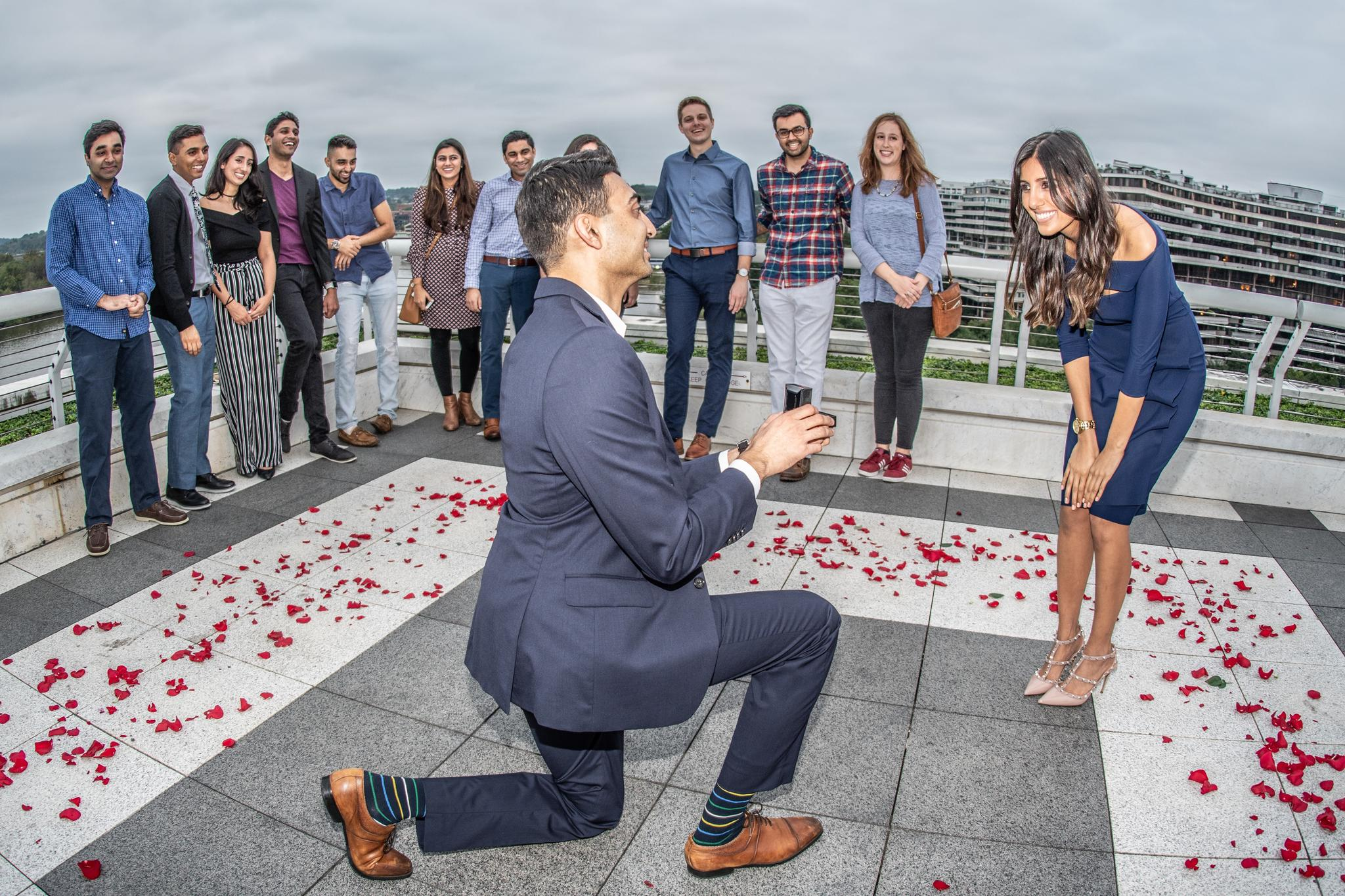 Kennedy Center Rooftop, Proposal - October 2018