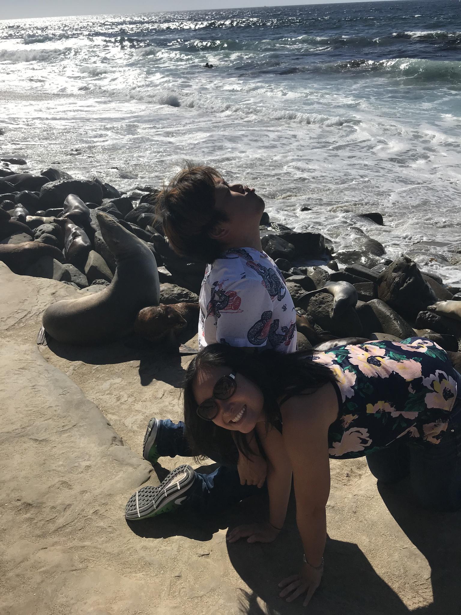 Being seals in San Diego