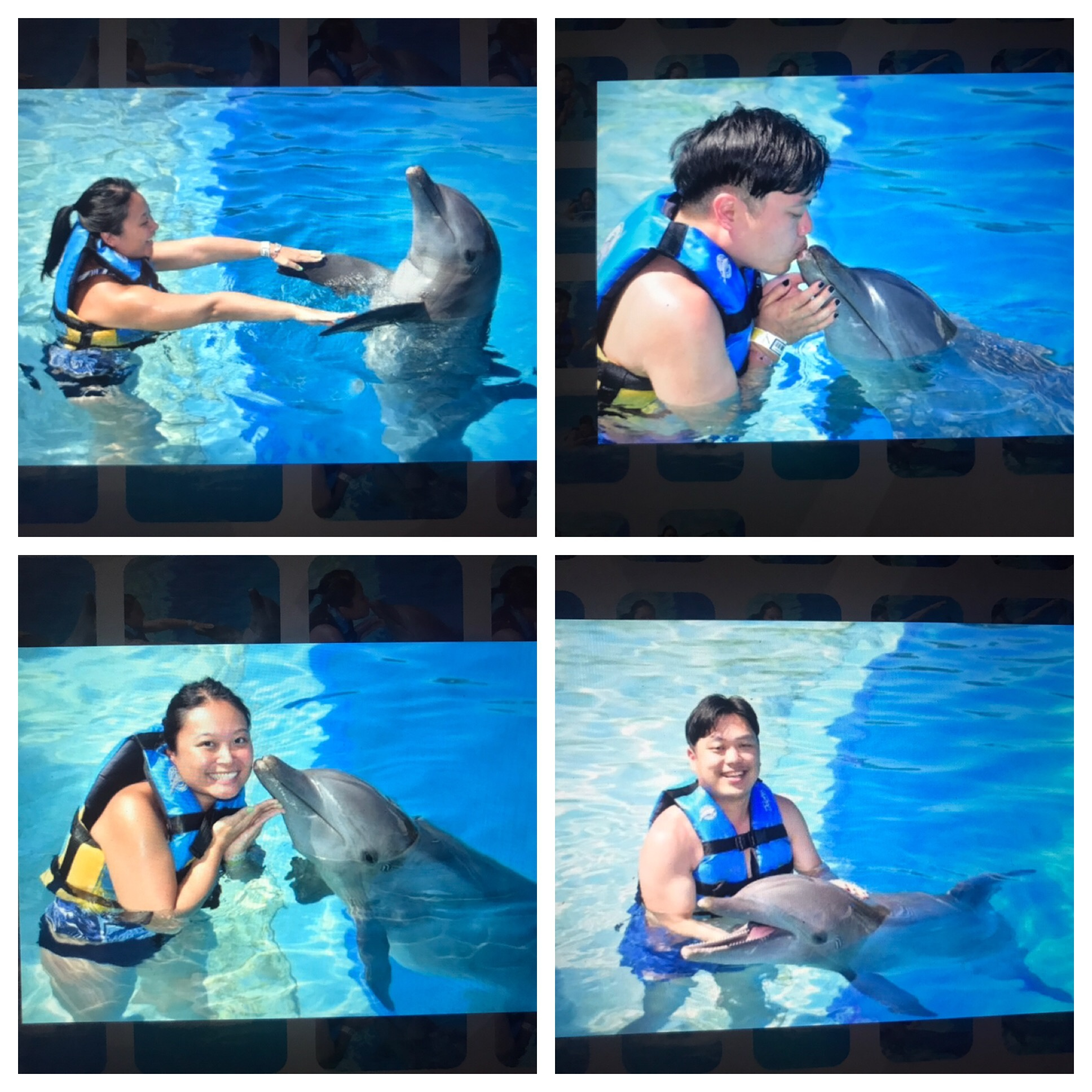 Making new friends in Cancun