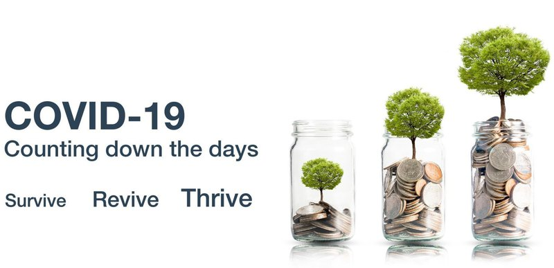 Counting Down the Days - Survive Revive Thrive (2)